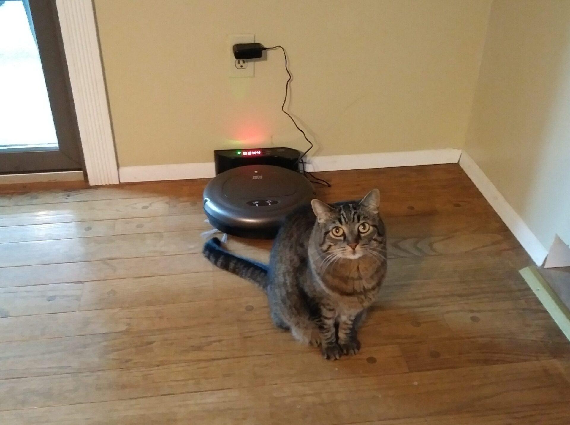 Easy Home Robotic Vacuum Aldi Reviewer