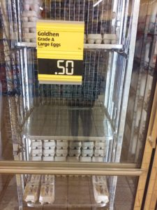 Goldhen Eggs at 50 cents
