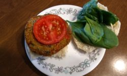 Earth Grown Vegan Southwest Quinoa Crunch Burger