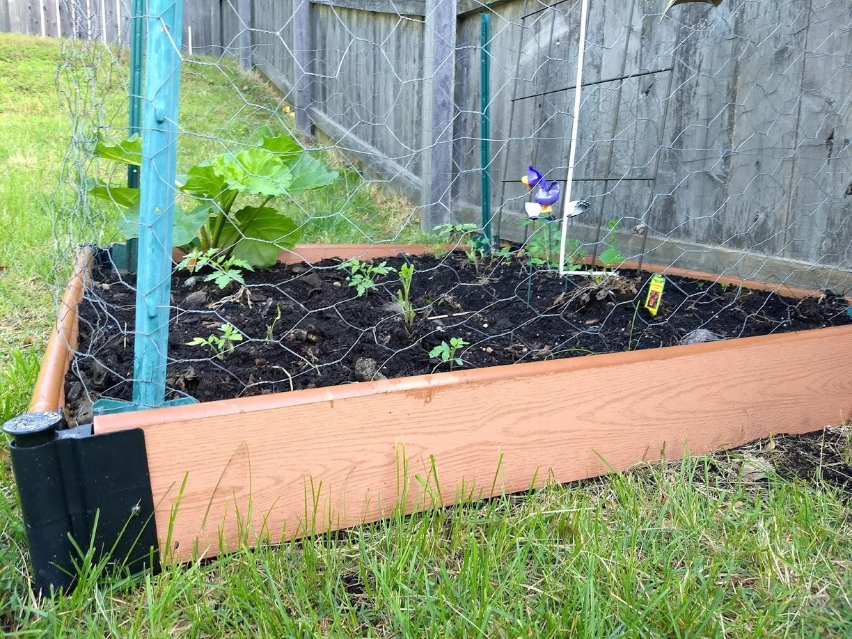 Picture of: Gardenline Raised Garden Bed Aldi Reviewer