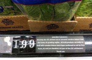 Aldi romaine lettuce