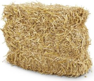 Huntington Home Straw Bale