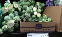 Queen Victoria Brussels Sprouts