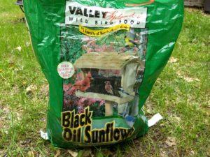 Valley Splendor Black Oil Sunflower
