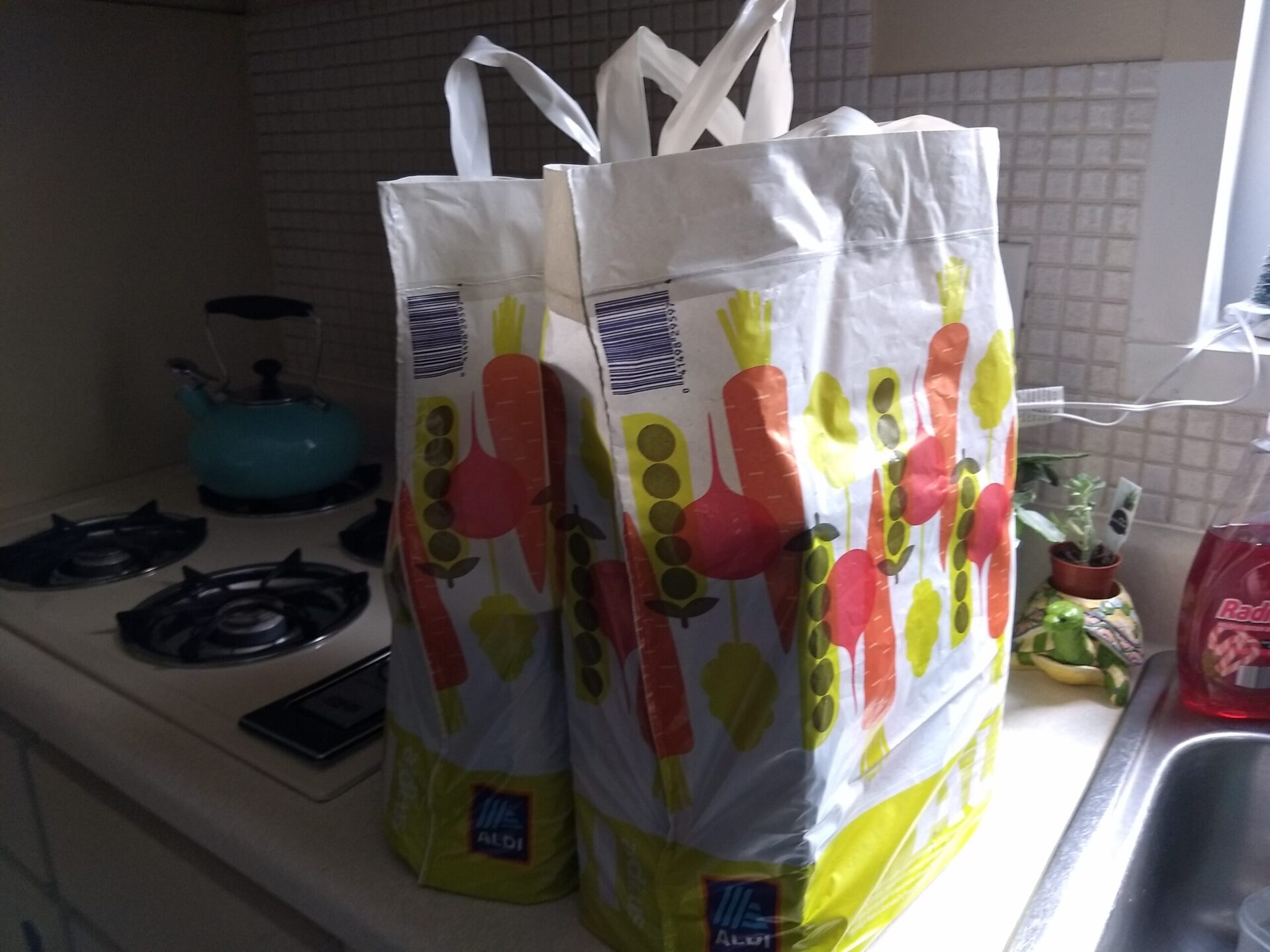 Testing the Aldi Instacart Delivery Service | ALDI REVIEWER