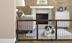 Heart to Tail Pet Gate