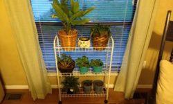 Aldi house plant stand