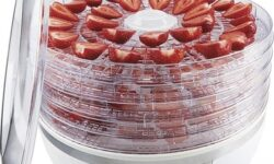 Ambiano Digital Food Dehydrator