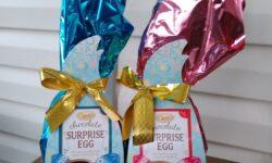 Choceur Chocolate Surprise Egg