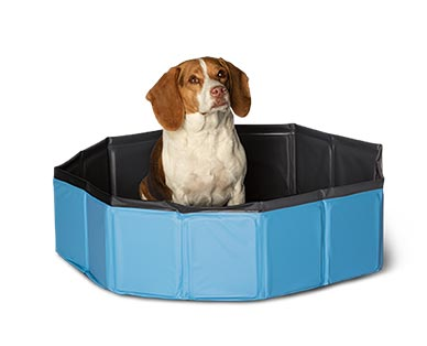 Heart to Tail Collapsible Pet Pool