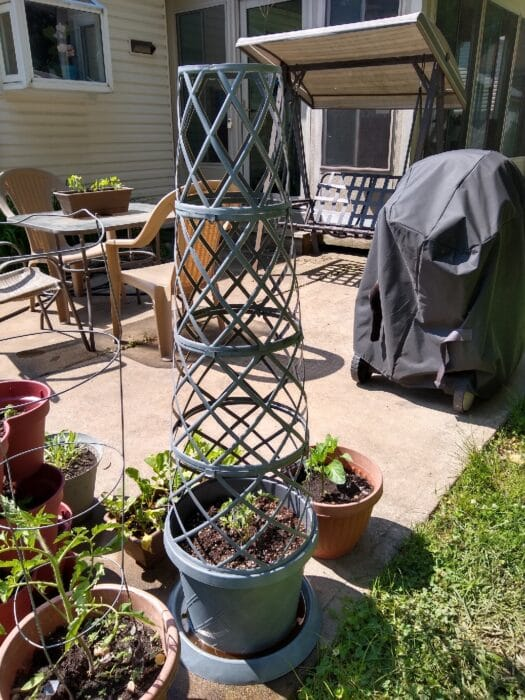 Gardenline Lattice Planter