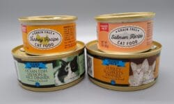 Trader Joe's canned cat food