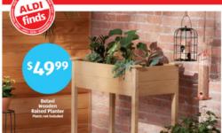 Belavi Wooden Raised Planter