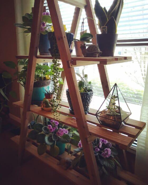 Belavi Wooden Plant Ladder Stand